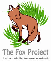 fox_project_logo